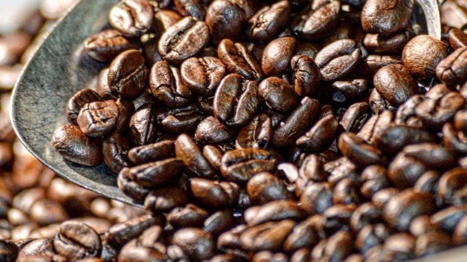 PC: Brown Dog Coffee Company